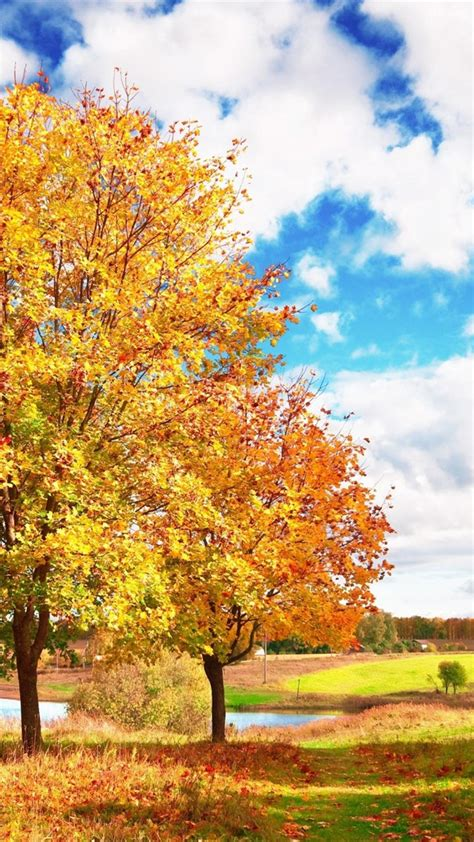 Autumn Wallpapers Iphone 7 by Autumn Iphone 6 Wallpaper On Wallpaperget