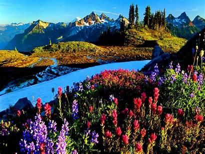 Scenery Spring Desktop Wallpapers Gunung Biru Mountains