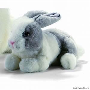 Lapin En Peluche : lapins en peluche ~ Teatrodelosmanantiales.com Idées de Décoration