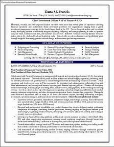 cfo resume templates free samples examples format With cfo resume template
