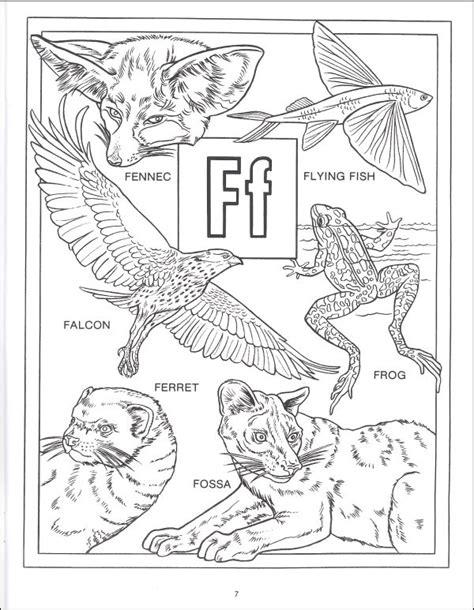 animal alphabet coloring book spizzirri publishing