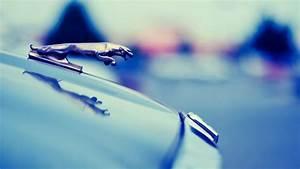 Jaguar Logo 1080p HD Wallpaper Car | HD Wallpapers Source ...
