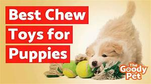best chew toys for teething puppies july 2018 buyer39s With the best dog toys for dogs who chew
