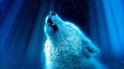 Wolf Majestic Howl Wallpapers Desktop Wallpapermaiden