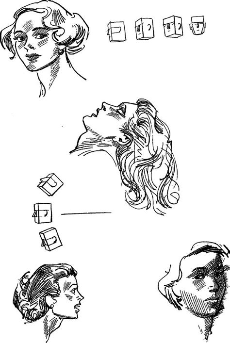 drawing  human face   draw head eyes nose mouth ears   draw step  step