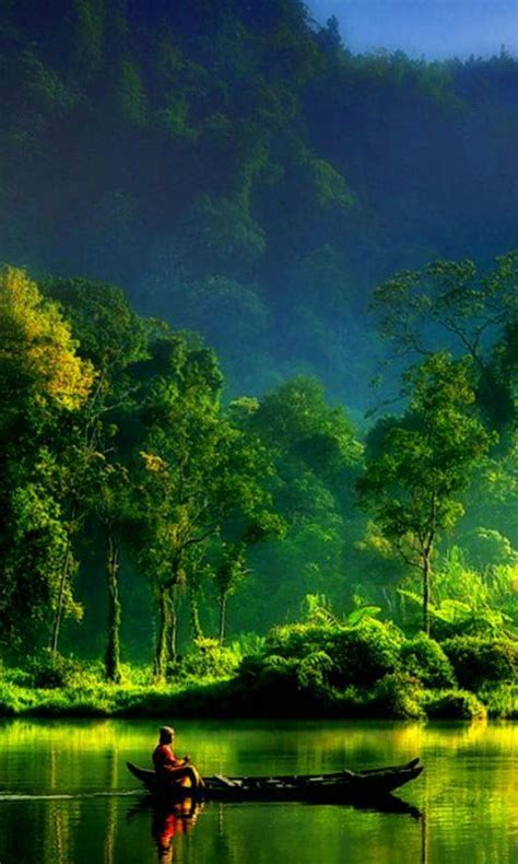 Nature Animated Hd Android Wallpaper For Mobile