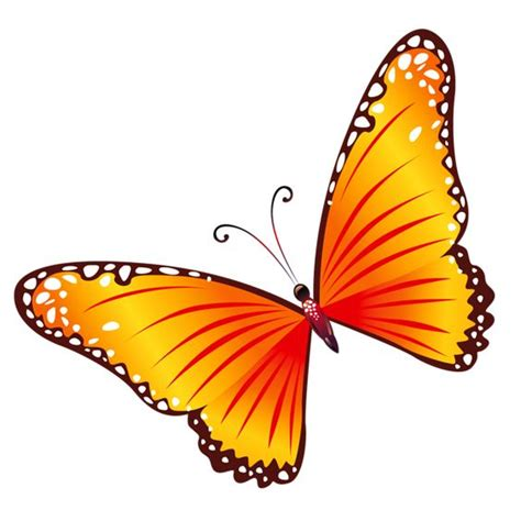 Now that most browsers support the majority of the features css3 offers, it's important for developers to catch up and be aware of the power of css3. Orange butterfly clipart - Clipground