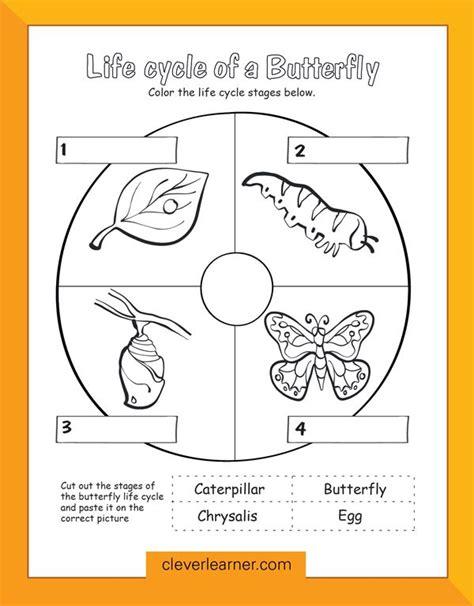 24 Best Preschool Science Activity Worksheet Images On Pinterest  Coloring Book, Coloring