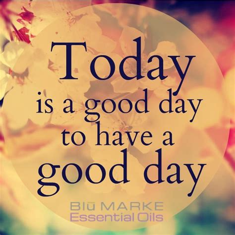 quote   day work stay positive work hard