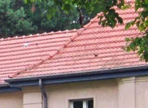 Neues Dach Mit Dämmung Kosten : neues dach kosten und tipps dein bauguide ~ Markanthonyermac.com Haus und Dekorationen
