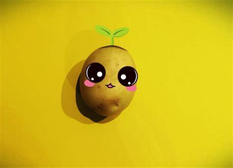 feel good guide  growing  potato love youth