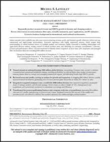 best resume for ceo award winning resume writing services distinctive documents