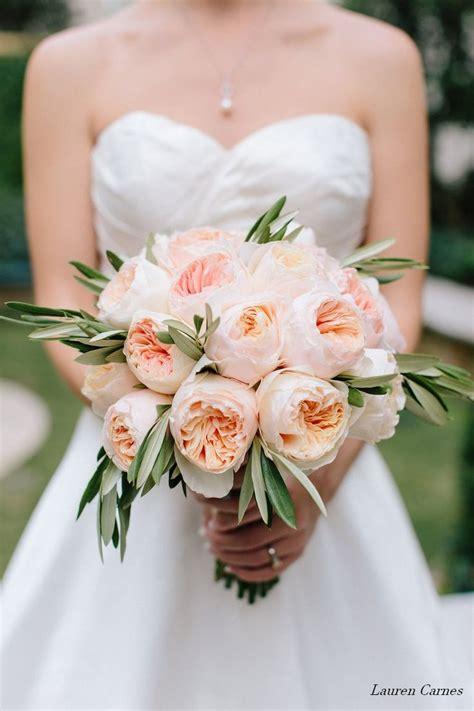 Best 25 Juliet Garden Rose Ideas On Pinterest