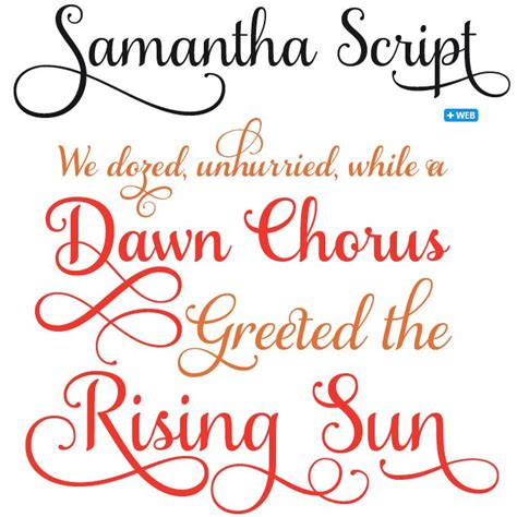 myfonts rising stars   silhouette fonts  script fonts lettering tutorial