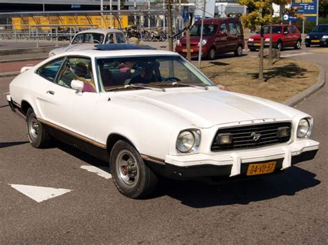 Mustang 2 Years by Mustangs Through The Years Modern Thrill