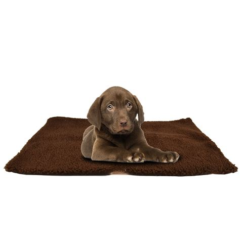 Tappeti Riscaldanti - tappetino riscaldante per cani tappeti riscaldanti croci
