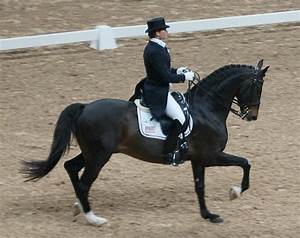 File:Leslie Morse, dressage rider from the United States ...