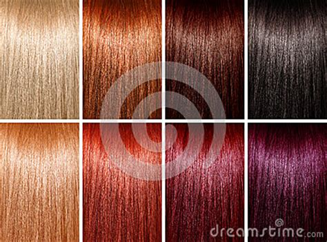 hair colors royalty  stock images image