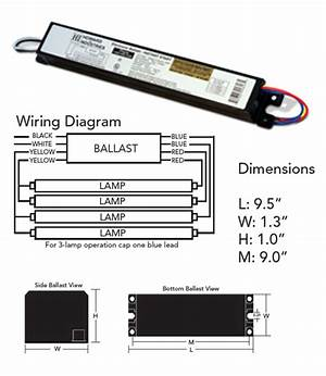 T8 4 Bulb Ballast Wiring Diagram 26270 Archivolepe Es