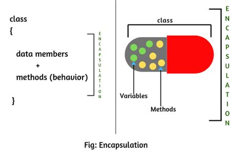 Encapsulation is used to hide the values. Encapsulation in Java   Realtime Examples & Advantages ...
