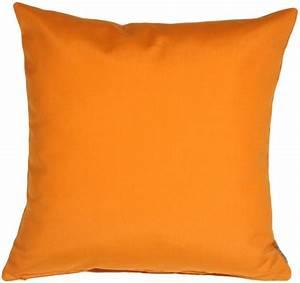 Sunbrella Tangerine Orange 20x20 Outdoor Pillow from