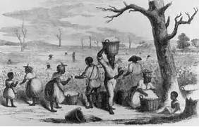 It s About Time  The role of slaves in the 16C-19C American    Slavery In The South