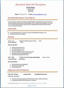 sample of chef resume template templates free printable With chef template resource