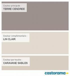 les 25 meilleures idees de la categorie couleur peinture With peindre un pan de mur en couleur 7 les 25 meilleures idees de la categorie dulux valentine