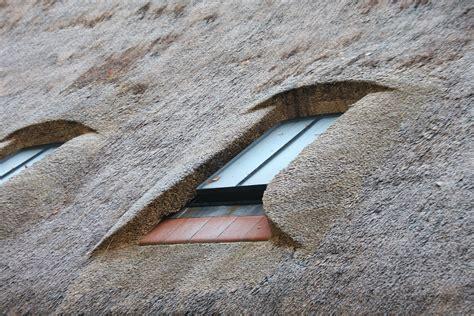 Reetdach Dacheindeckung Mit Natuerlichem Baumaterial by Reetdach Haltbarkeit