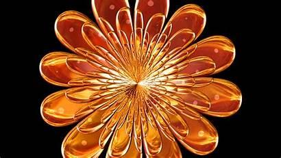 Solid Flame Fractals Flower Fractal Map Reflection