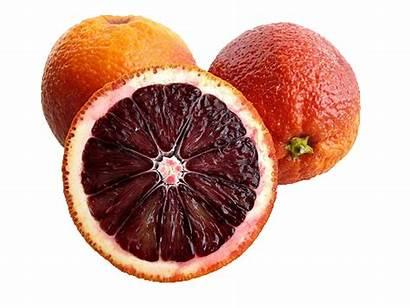 Blood Orange Oranges Oil Essential Recipes Winter