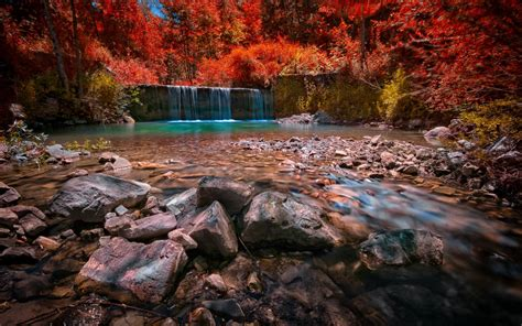 Landscape Nature Waterfall Pond Forest Colorful Red
