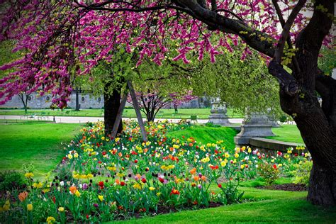 Dans Le Jardin by Photo Paysage Le Photos De Paysages Nature
