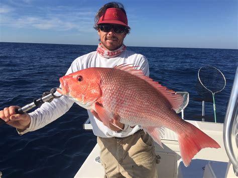 charleston charters nearshore fishing