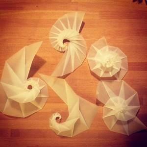 Origami Lampe Anleitung : anleitung nautilusspirale zum kostenlosen ausdrucken bastelideen origami lampe basteln ~ Watch28wear.com Haus und Dekorationen