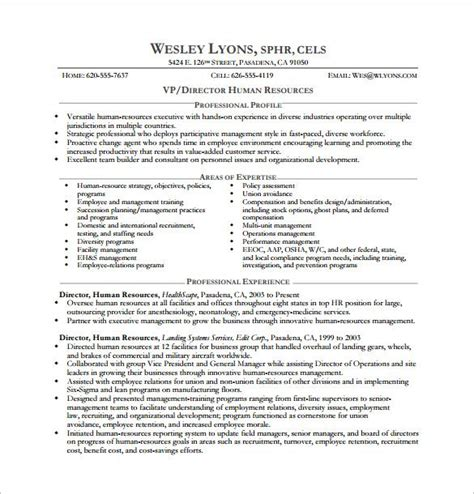 Resume Template Executive by Best 25 Executive Resume Template Ideas On