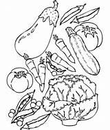 Coloring Vegetable Pages Vegetables Printable sketch template