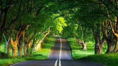 Scenery Desktop Wallpapers Summer Natural Road