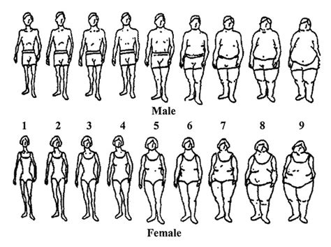 'perceptions Of Body Image Throughout History' Timeline