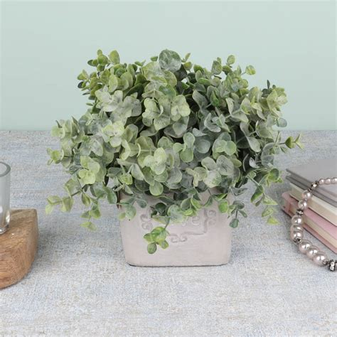 eucalyptus in a pot artificial eucalyptus plant in pot by dibor notonthehighstreet