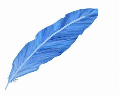 Feather Feathers Clipart Siting Drawing Pen Bluefeather