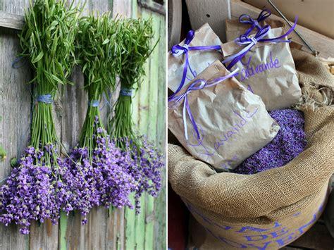 garten provence lavendel kreativ gartenzauber