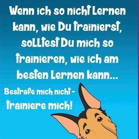 Preise  Hundeschule In Rüsselsheim Und Hochheim