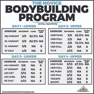 The Novice Bodybuilding Program Bodybuilding Program