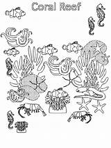 Test Ecosystem Coloring Fish Pages Reef Submitted Colored Coral Kidsplaycolor sketch template