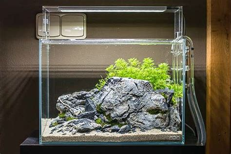setup aquascape a rocky aquascape by voloduson ada m with aquasky 361
