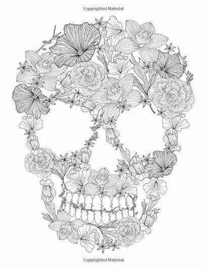 Coloring Skulls Skull Sugar Flowers Flower Printable