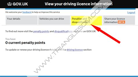 View Your Driving Licence Information