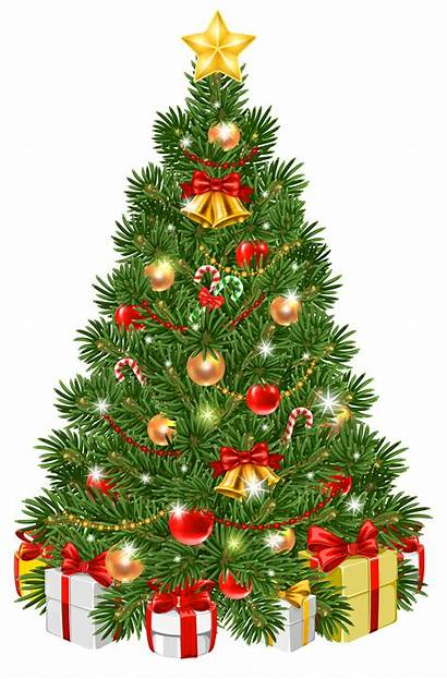 Decorated Clipart Christmas Tree Clip Transparent Clipground