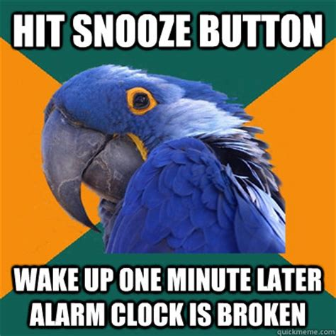 Button Broke Meme - hit snooze button wake up one minute later alarm clock is broken paranoid parrot quickmeme
